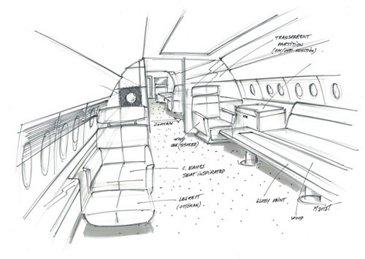 ACJ Bluejay Sketch