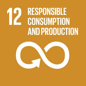 E SDG Goals Icons Individual Rgb 12