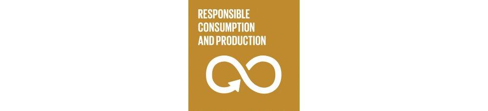 Consumption Production Goal