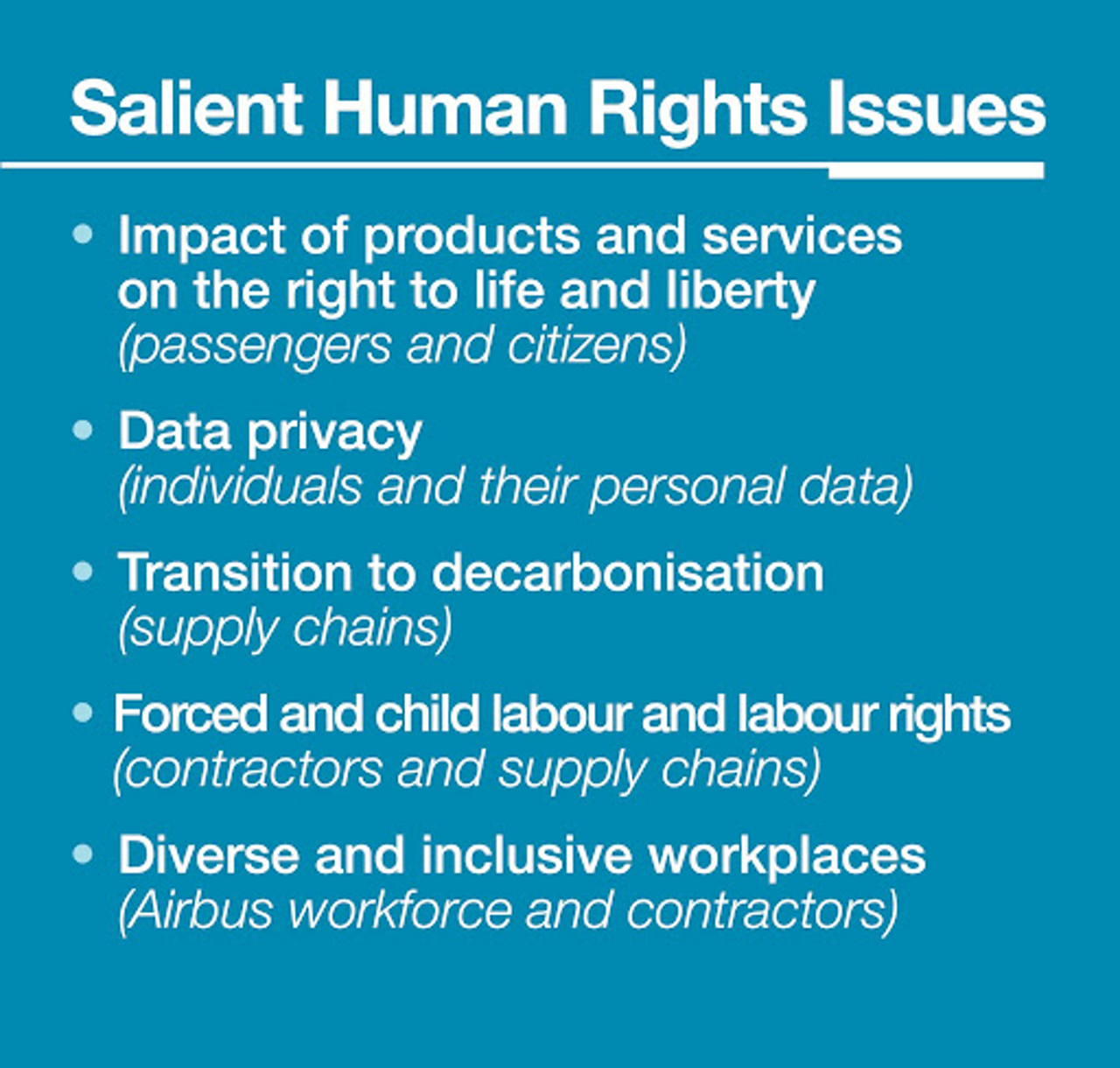 Bullet point of salient areas of potential human rights risks