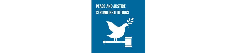 Peace Justice Goal