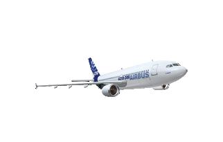 A310 300