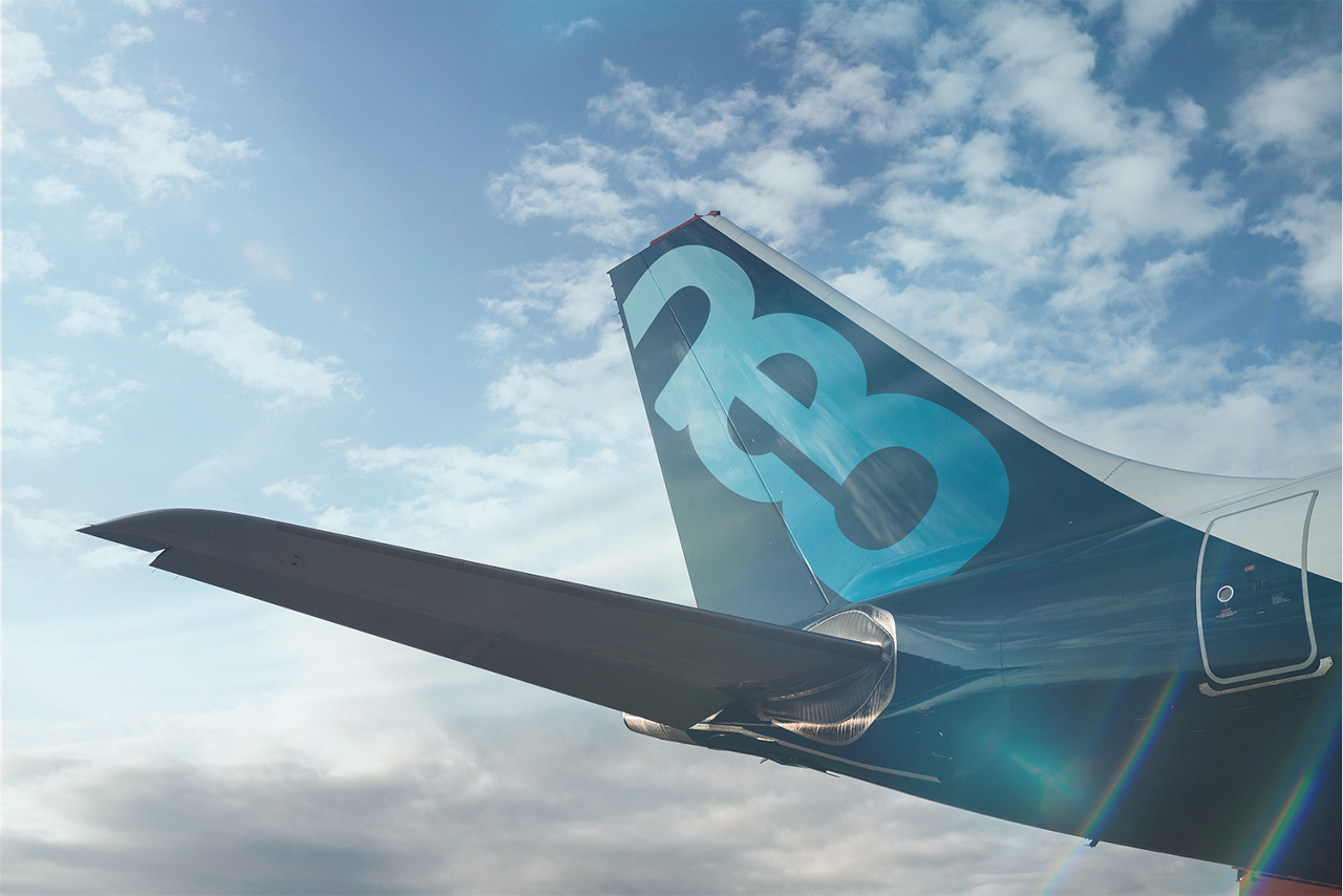 Airbus A330neo Treated Image 12