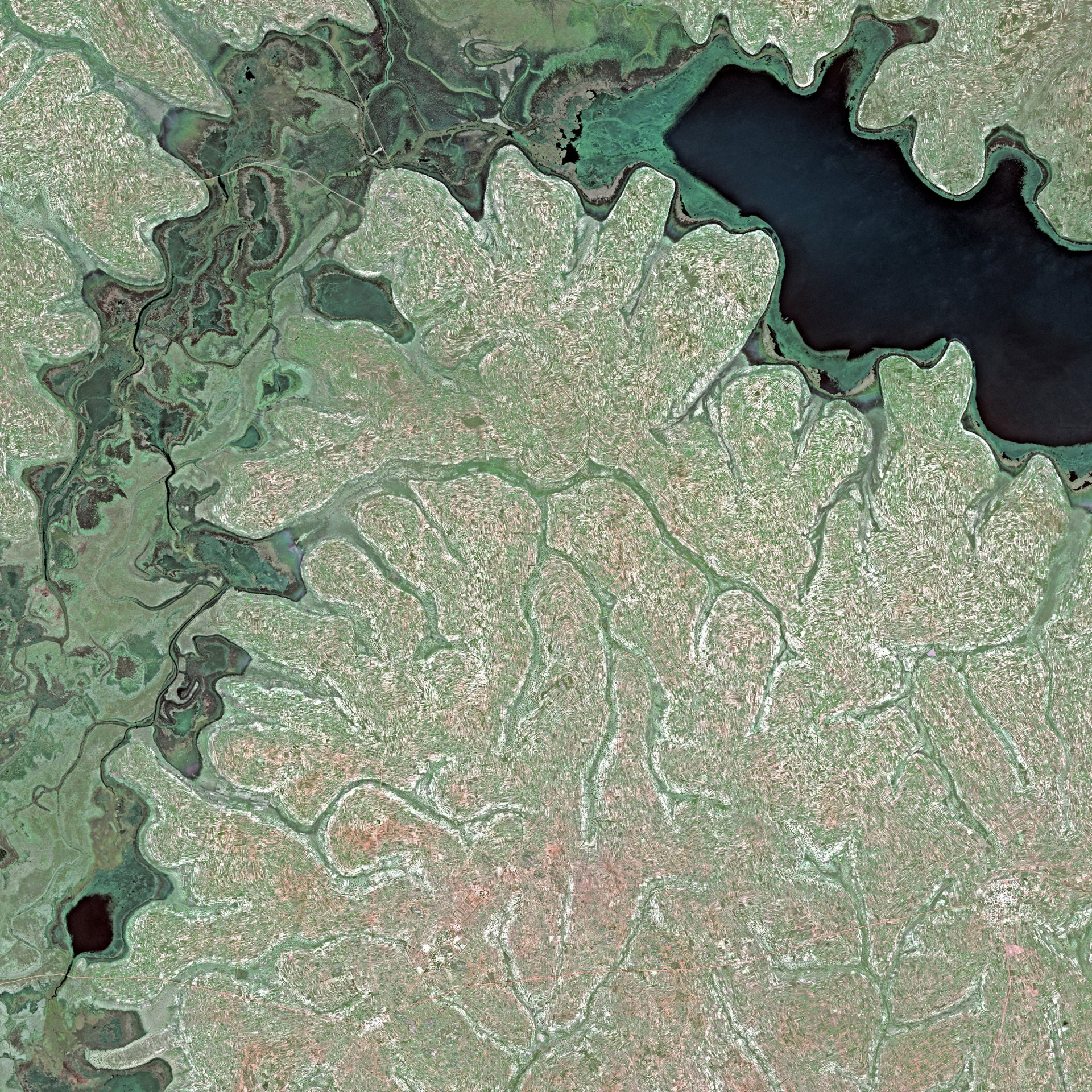 Lake Kyoga, Uganda