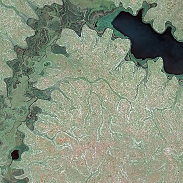 Lake Kyoga, Uganda SPOT 5 Satellite Imagery