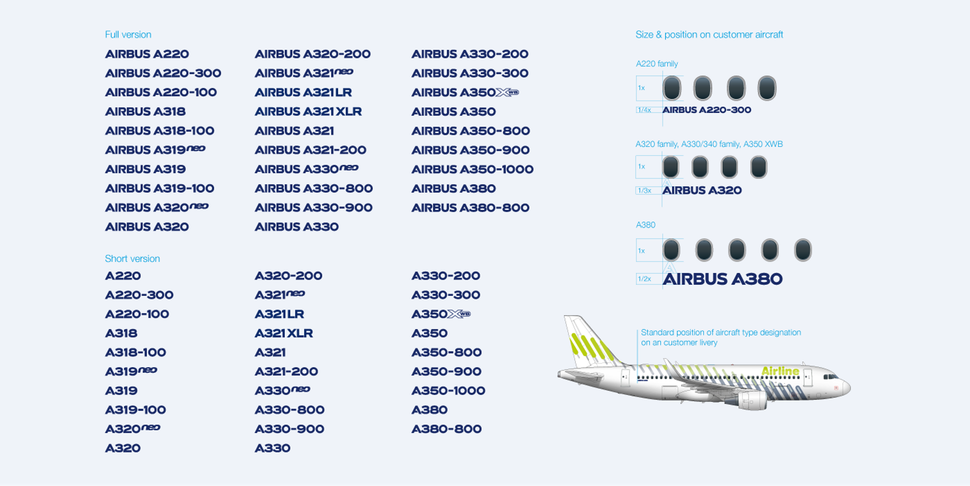 Aircraft Livery Types