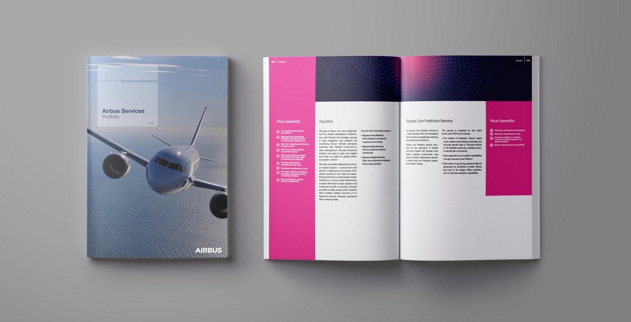 Skywise Brochure