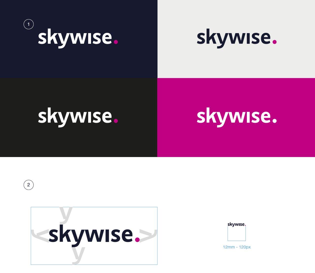 Skywise Logo Variants