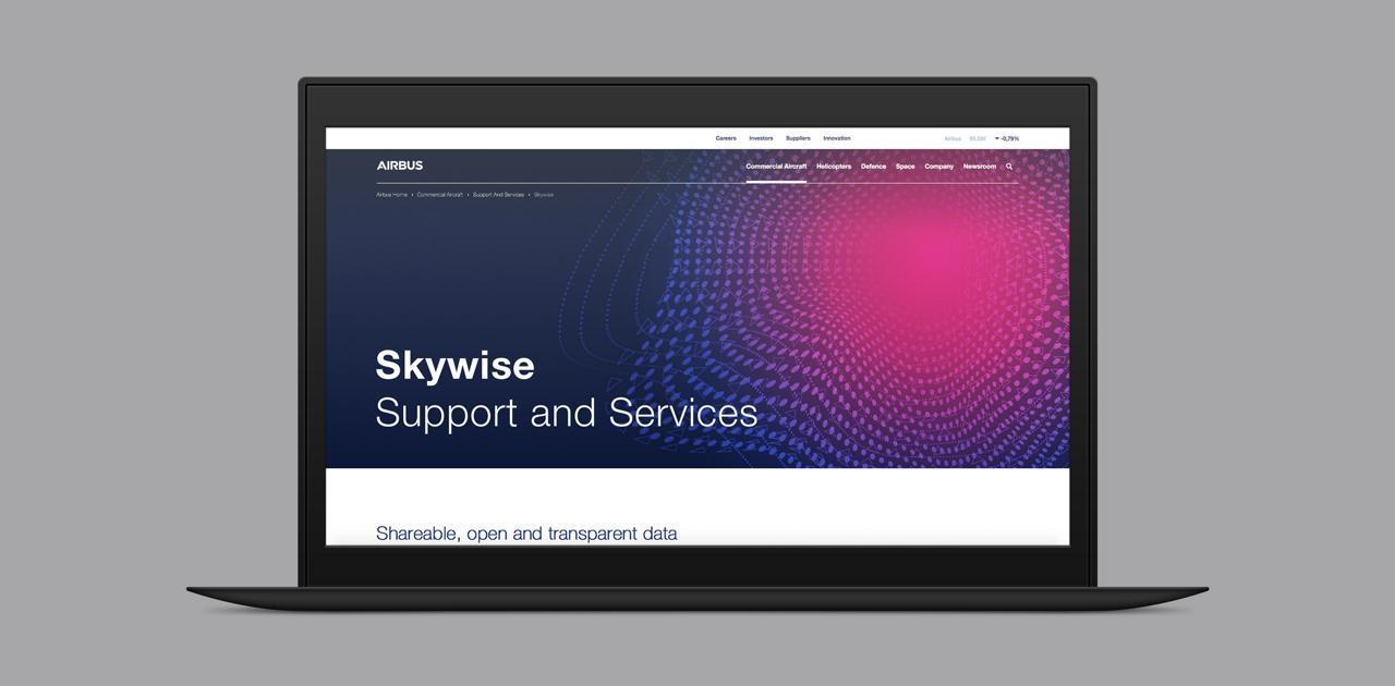Skywise Website
