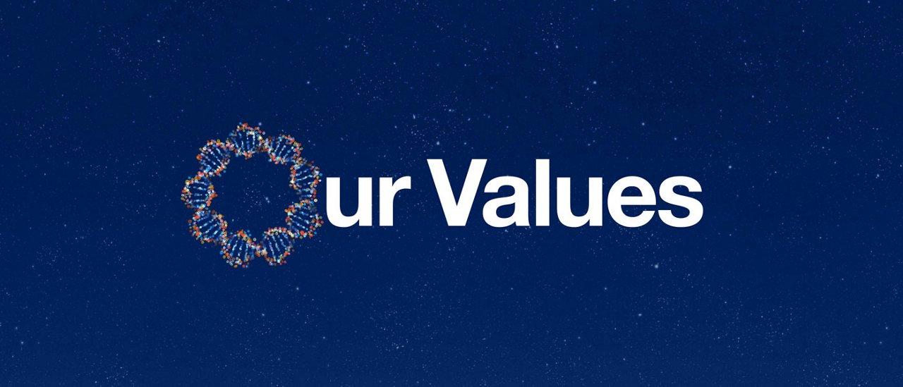 Purpose Framework Values