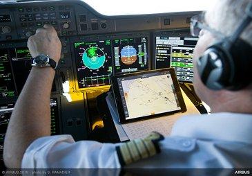 Flight Services - cockpit view