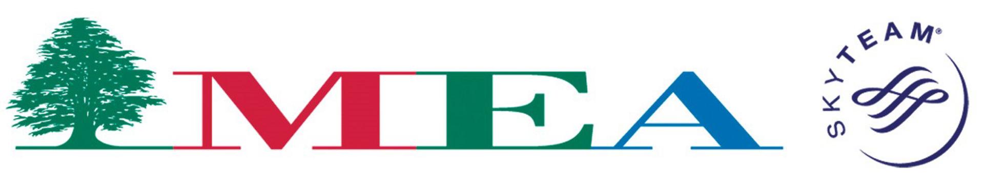 MEA logo FAST