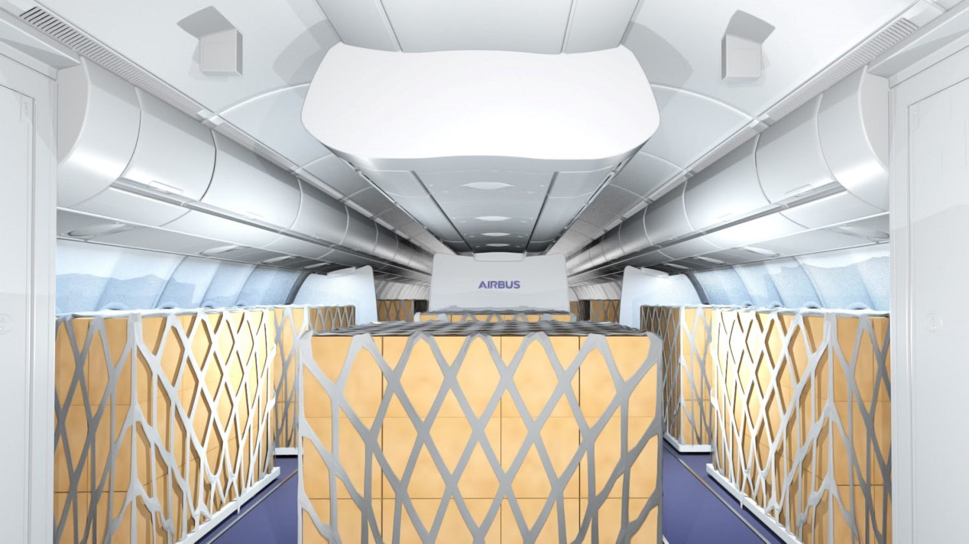 "Airbus and Lufthansa Technik have signed a cooperation agreement to co-develop ""Temporary Cargo Cabin"" solutions for A330s.