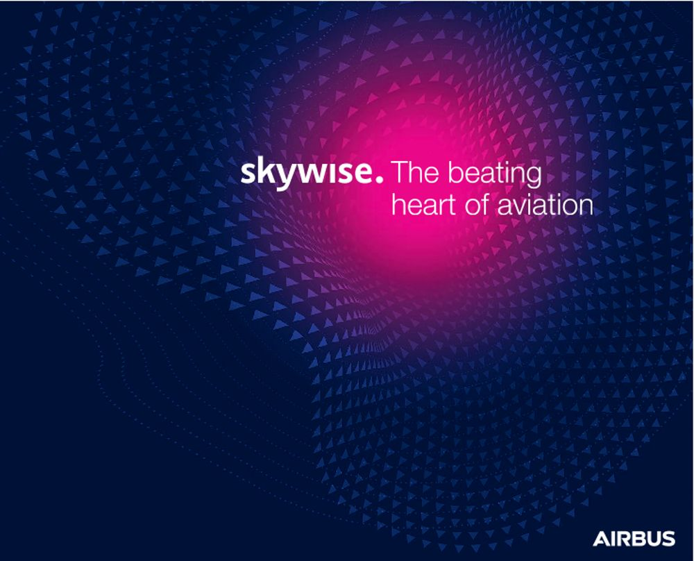 Skywise Brochure