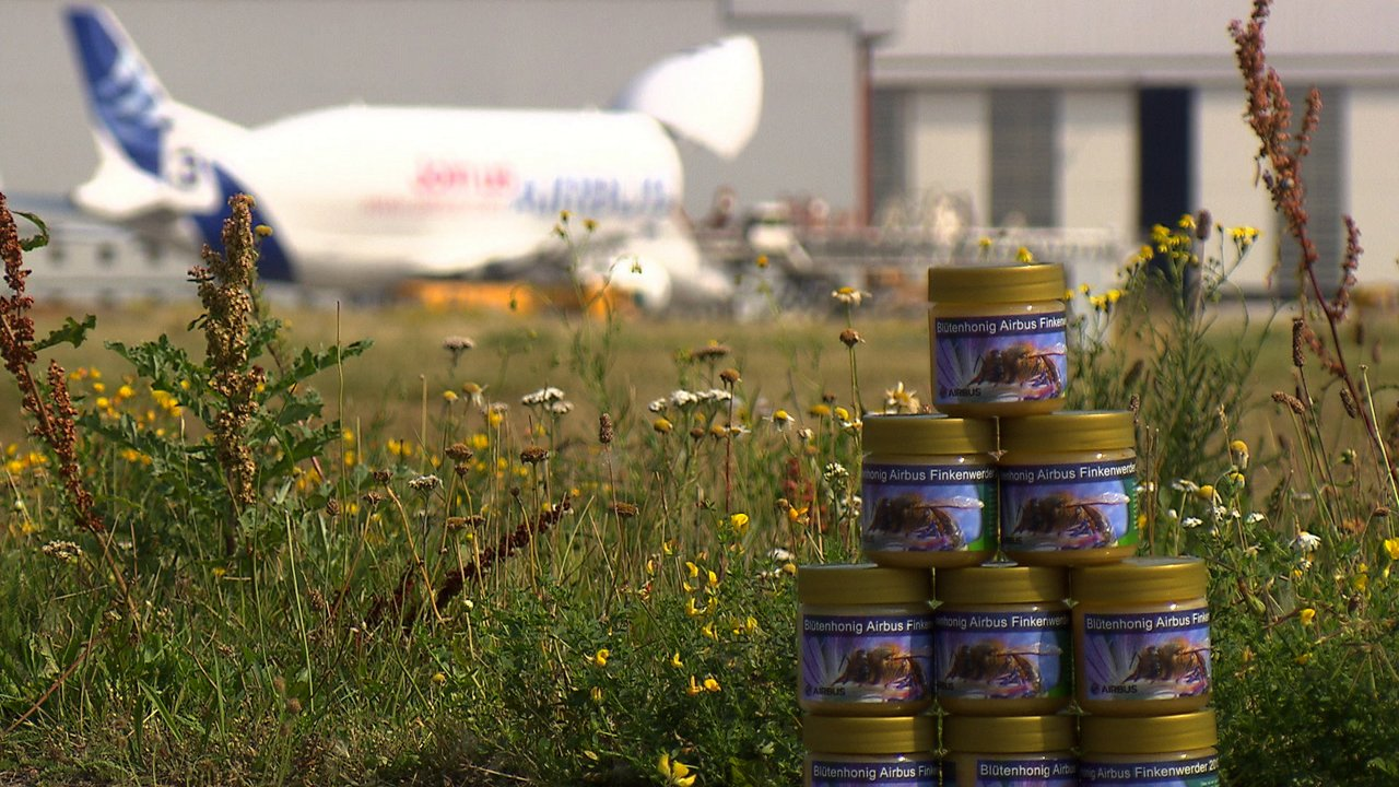 Honey collected from beehives in two locations at Airbus' Hamburg, Germany facilities is used to help the company monitor its environmental footprint, as well as jarred and given away as presents to customers, suppliers and Airbus staff