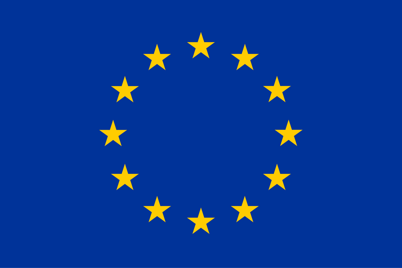EU Emblem Flag