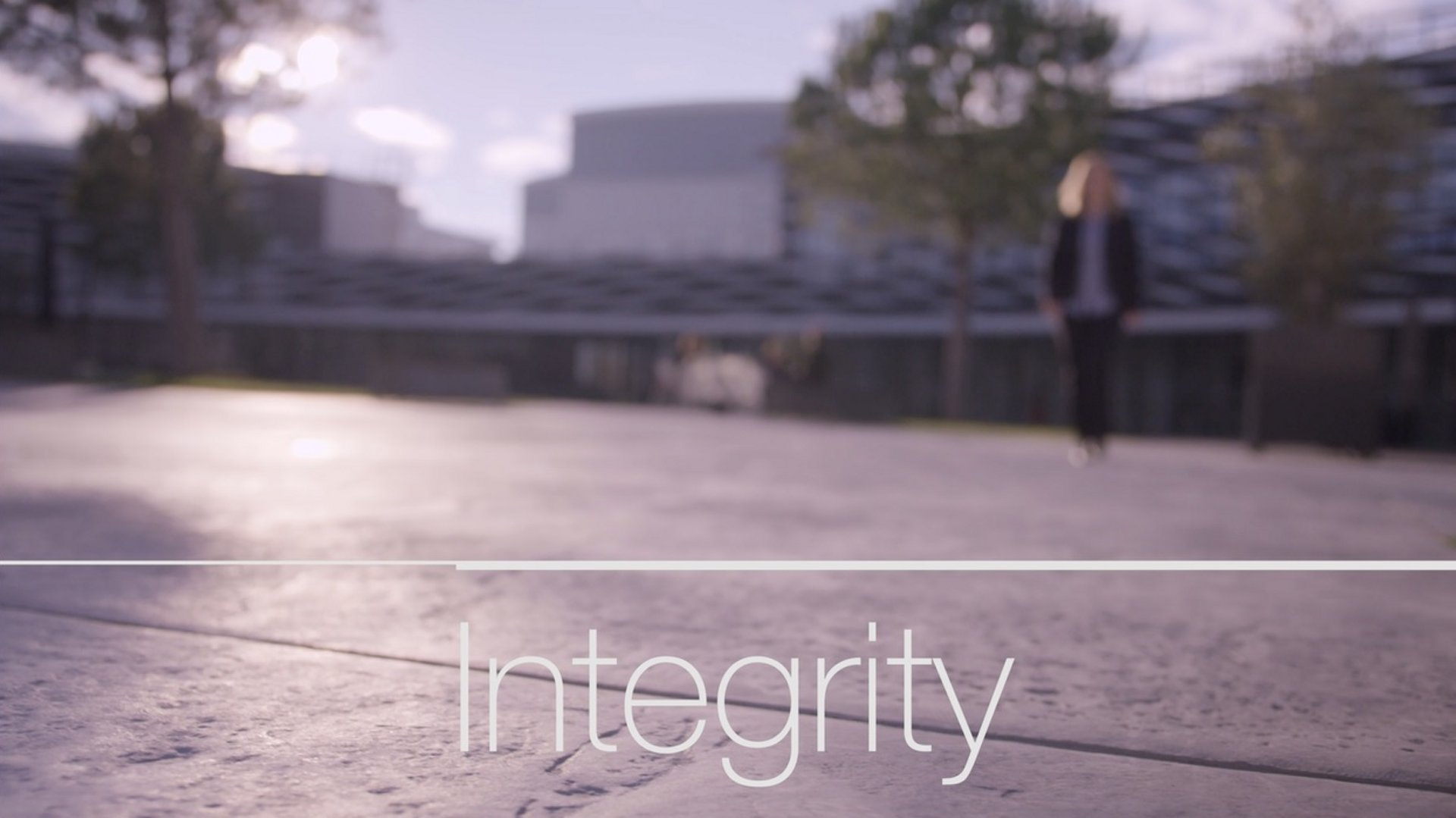 Values - Integrity