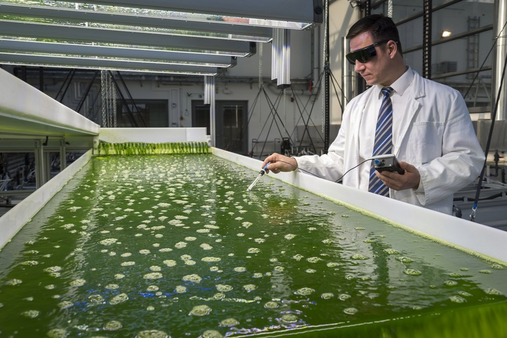 Research on biofuel from algae starts at Ludwig Bölkow Campus, uniting Technical University of Munich, Airbus Group & Partners. The 1,500 square meter building houses three areas for algae cultivation, as well as laboratory and office space. The building's façade is comprised of special highly transparent glass that also lets ultraviolet light pass through while elaborate climate technology and additional LED lighting allows the simulation of light and climate conditions of practically any location on Earth. The strategy of Airbus Group Innovations is to focus the research of its partners on sustainable sources of biomass, as an example with micro-algae, which have emerged as one of the most promising sources of biofuels.