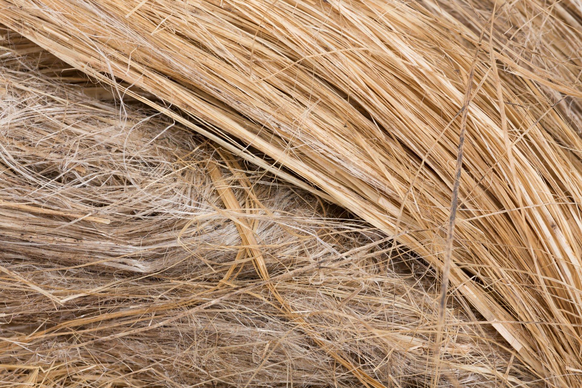 raw flax fiber