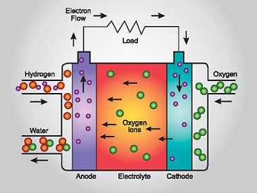 Hydrogen Fuel Cells How It Works Web