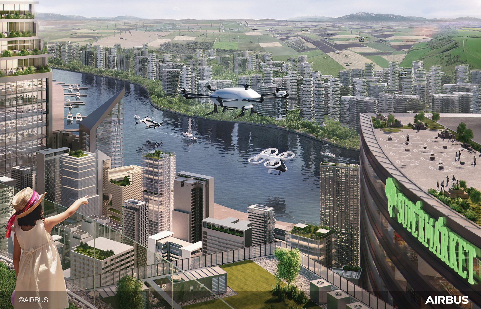 Urban Air Mobility: on the path to public acceptance
