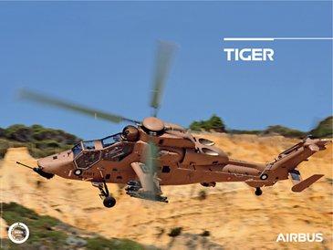 Mini Poster Tiger