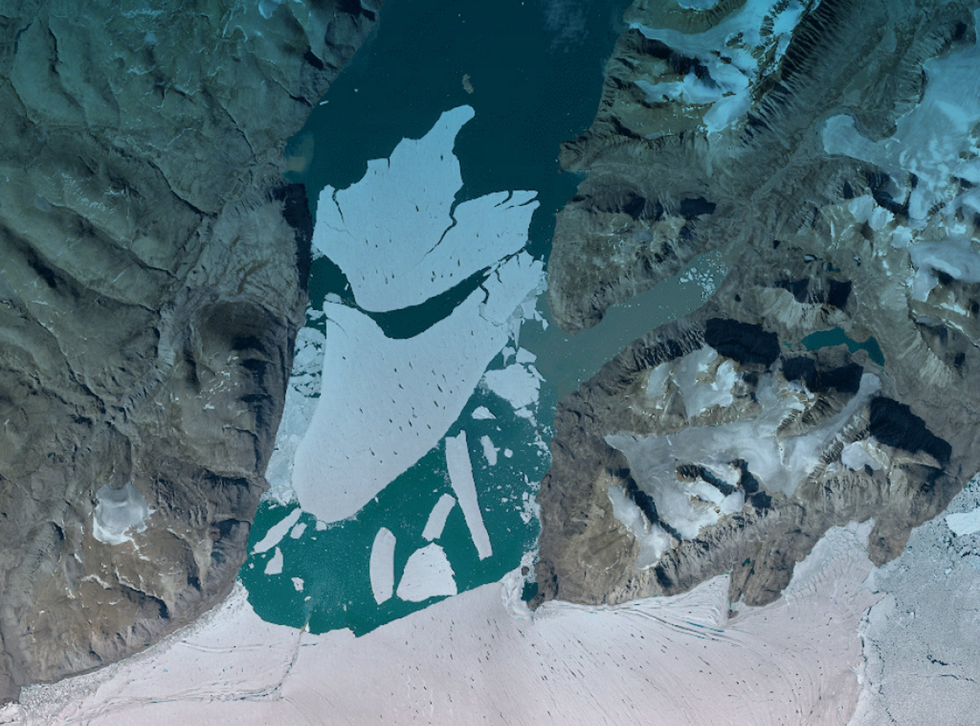 Space insights for climate action
