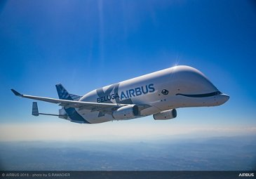 BelugaXL in flight