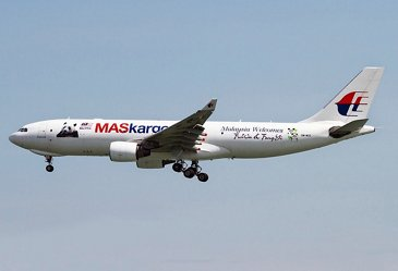A330 Malaisian special panda livery