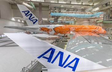 Third All Nippon Airways A380 – Livery