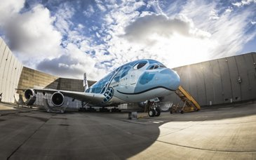 A380 in sea turtle livery for All Nippon Airways
