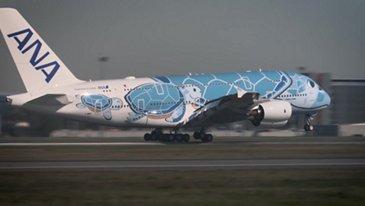 A380 ANA Landing