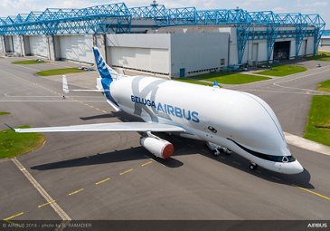 BelugaXL with special livery 8