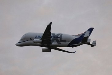 The BelugaXL in flight to Germany