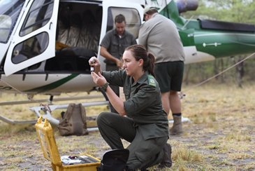 Namibia national park ranger checks her equipment