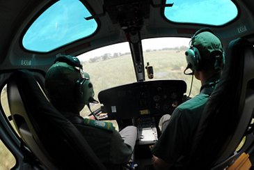 Etosha National Park aerial surveillance in an H125