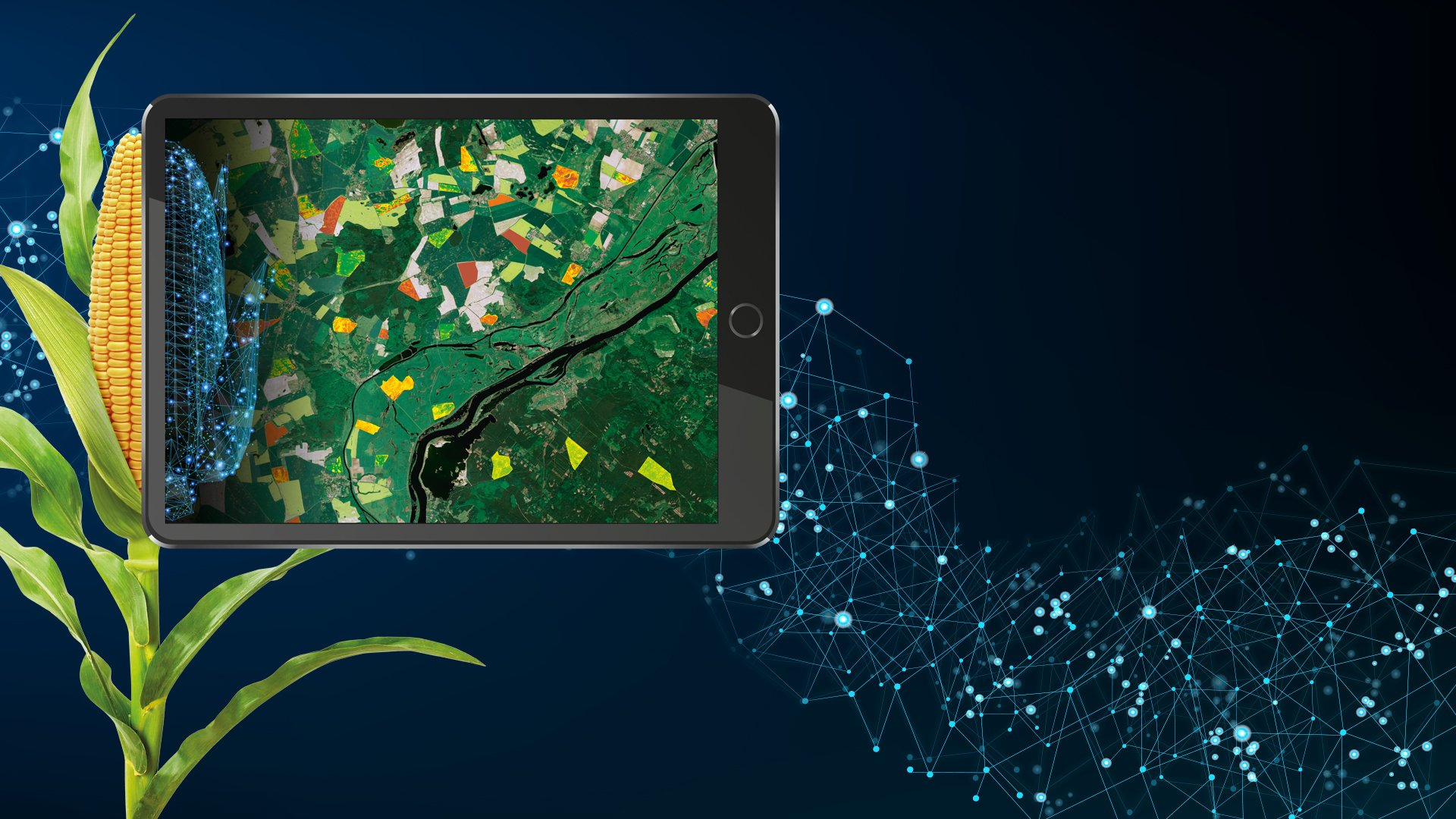 Innovative solution to deliver detailed crop analytics already adopted by DataFarming