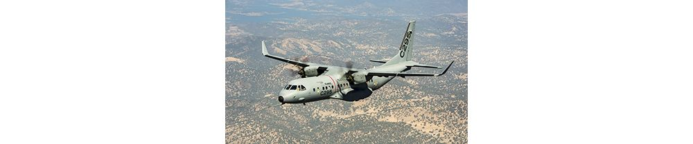C295 Winglets