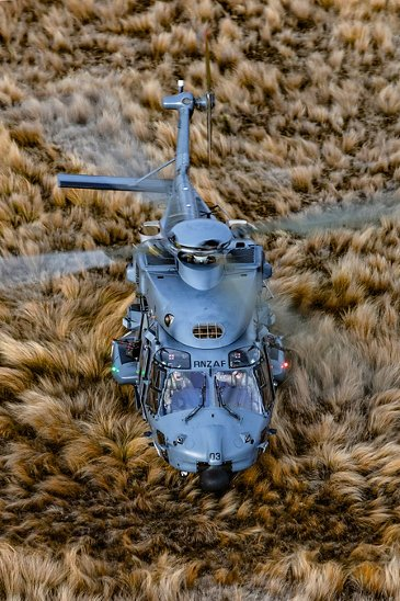 NH90 On The Level
