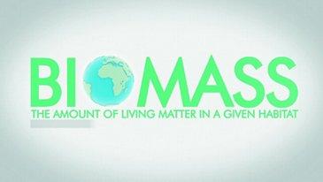 Biomass - Promo clip