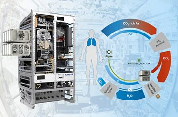 Photobioreactor Infographic
